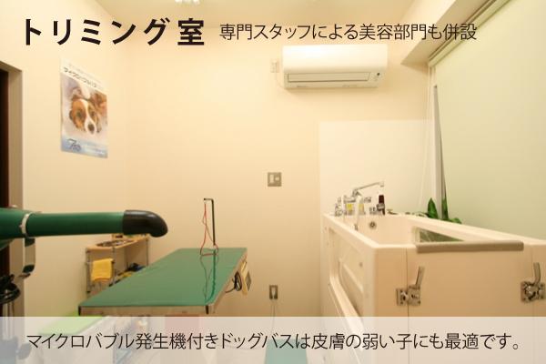 豊中 動物病院 トリミング室